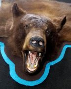 Open Mouth - Bear Rug