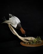 End Table Canvasback Mount